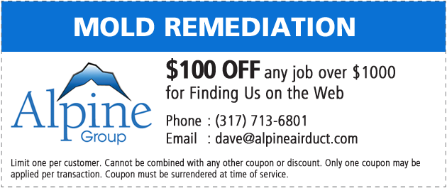 Indianapolis-Mold-Removal-Remediation-Coupon